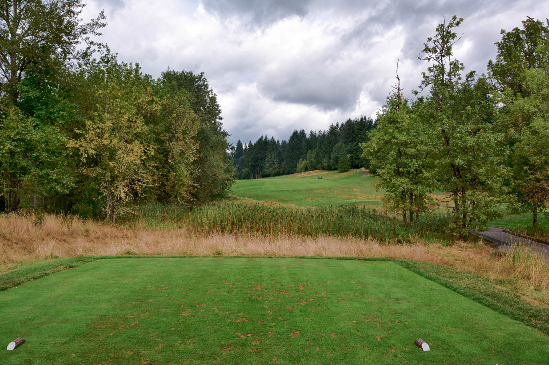 Why Ghost Creek At Pumpkin Ridge Is The Best Public Course