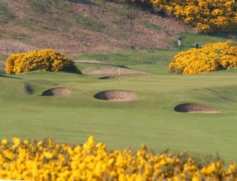 Golf Road Trip Version 2.0: Scotland