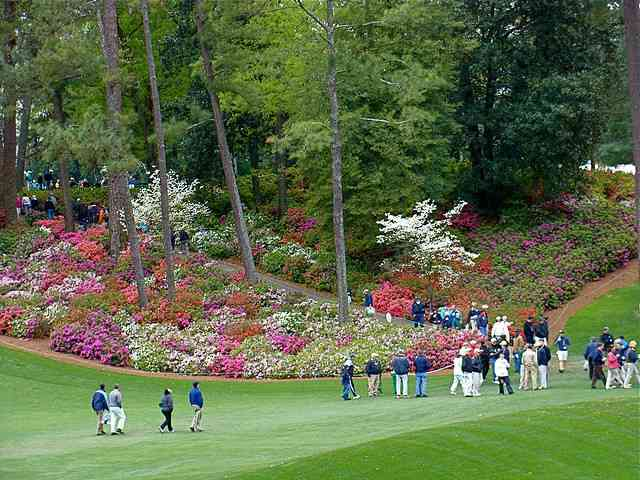 Masters Guide: Everything Your Need to Know for Your First Time at Augusta