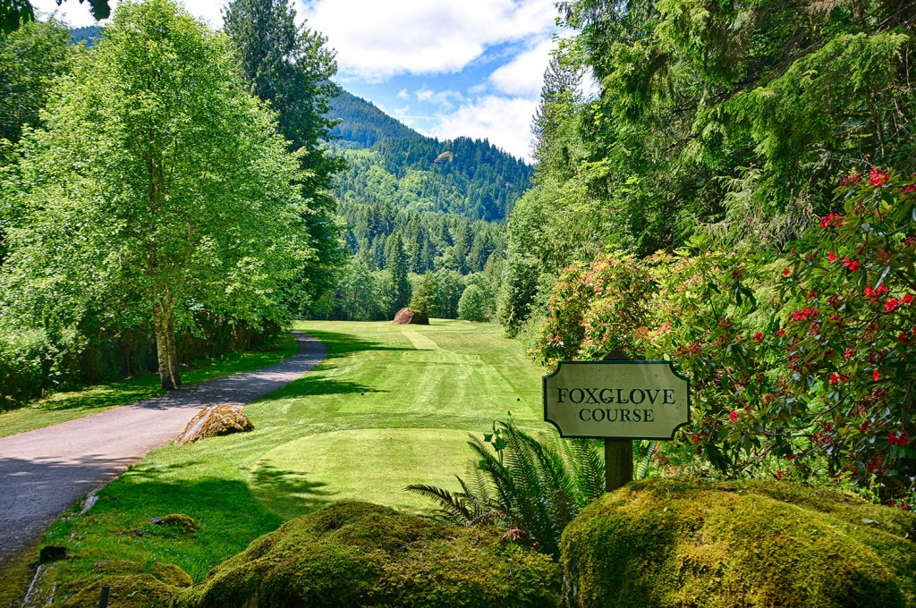 Foxglove Course - The Resort at the Mountain