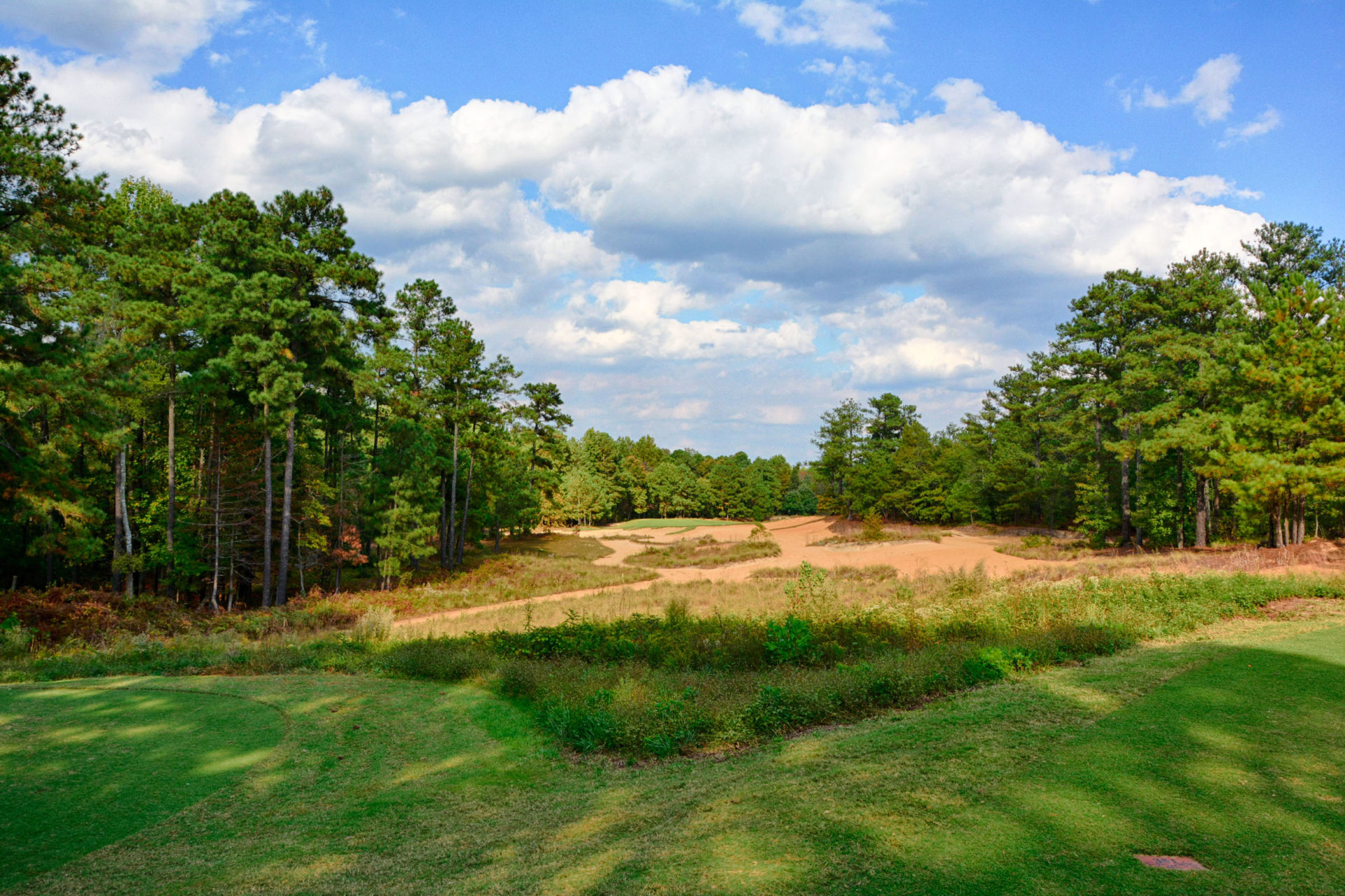 Tobacco Road Hole 15