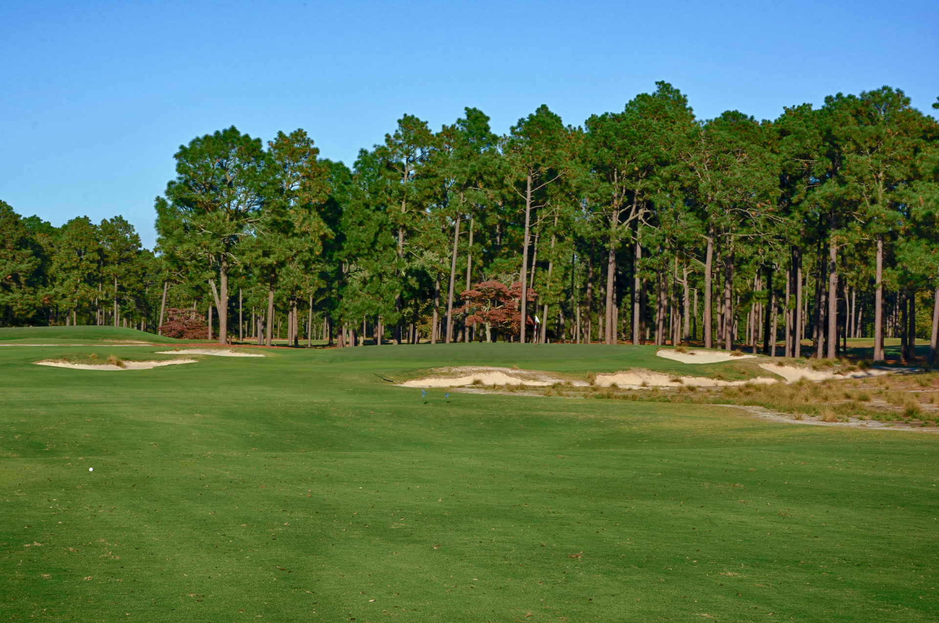 Pinehurst 2 - Hole 12 Green