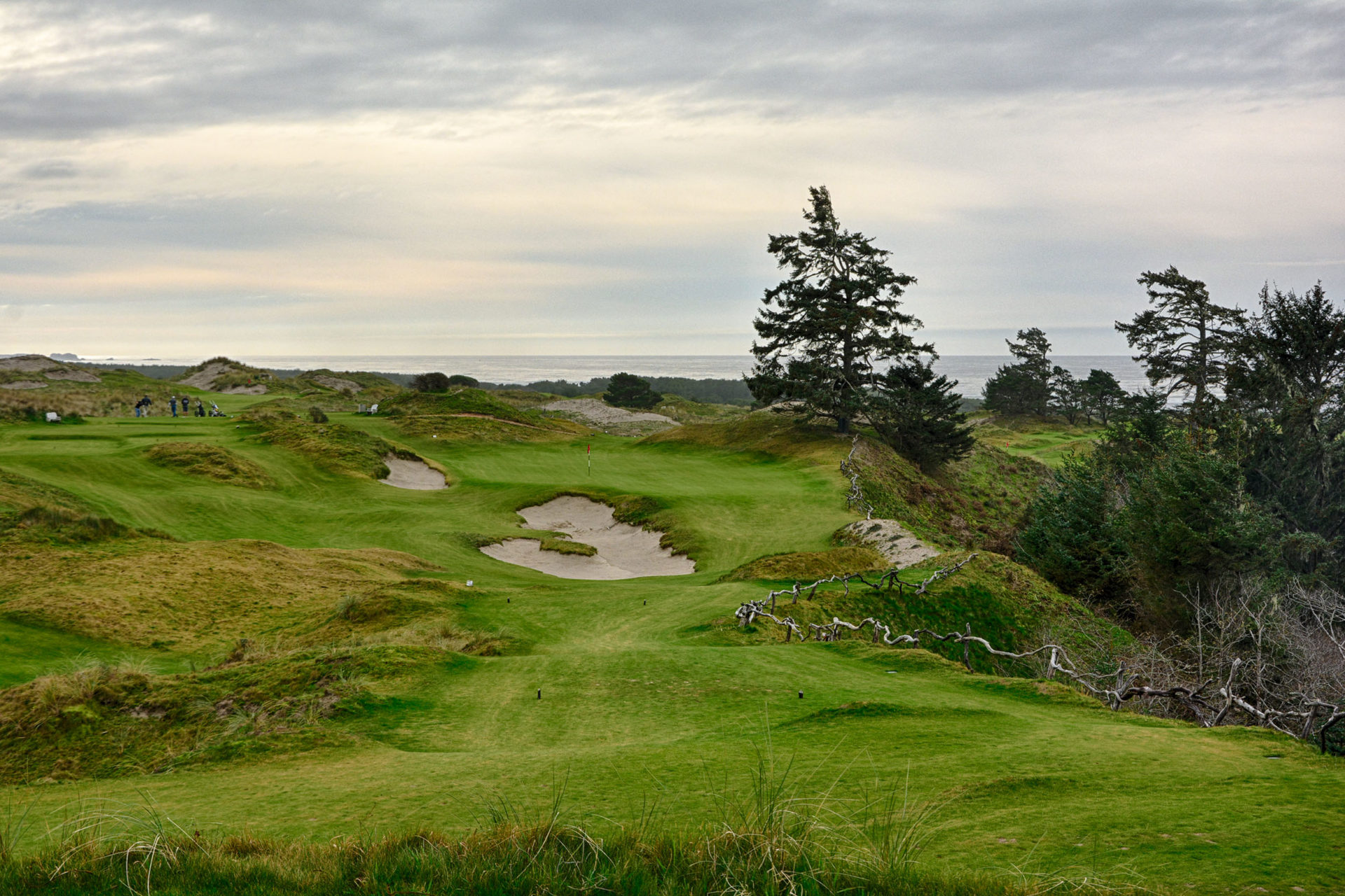 Some think the 2nd at Bandon Preserve is the best on the course.
