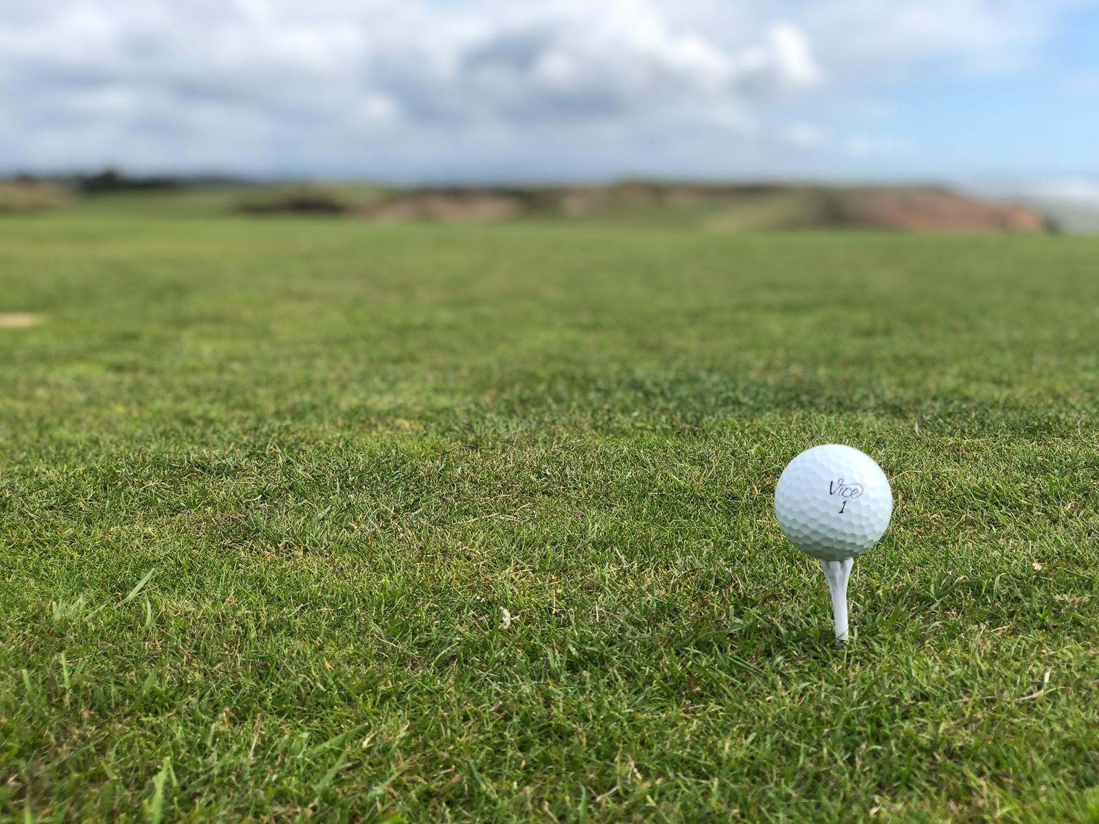 Vice Pro Pluis Golf Ball